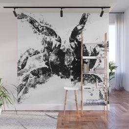 tarantula fangs wsbbw Wall Mural