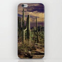 Saguaro Cactuses in Saguaro National Park iPhone Skin