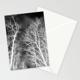 Black and whit naked trees forest, negative version Stationery Cards