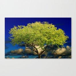 Tree of Wisdom Canvas Print