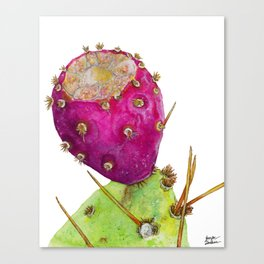 Prickly Pear Cactus Fruit Canvas Print