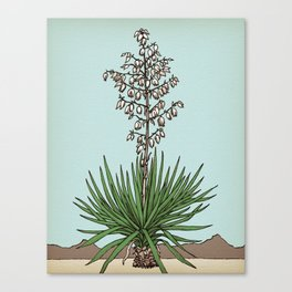 the mighty yucca Canvas Print