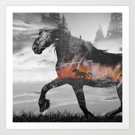 Black Horse Sunset Run Art Print