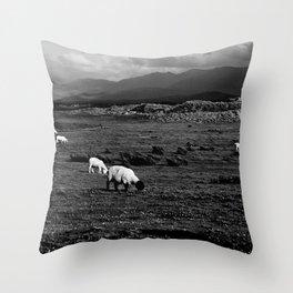 Sheep and Mountains, Inch Beach, Dingle Peninsula Throw Pillow