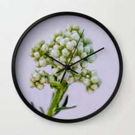 little white flowers Wall Clock