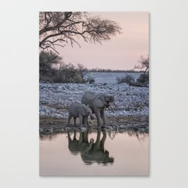 Mama Elephant and Calf Drinking Together, No. 3 Canvas Print