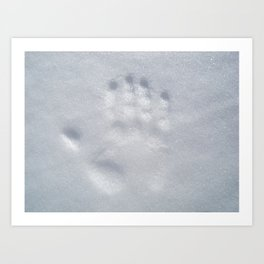 snow print Art Print