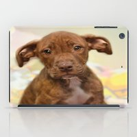 pit bull iPad Cases featuring Pit Bull  Mix Cutie Puppy for Adoption  by Peggy Volunteer Photographer  FOR RESCUE