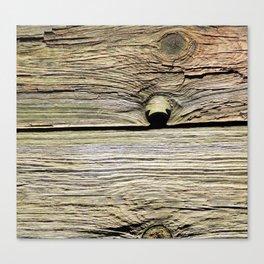 Natural Wood Panels Canvas Print