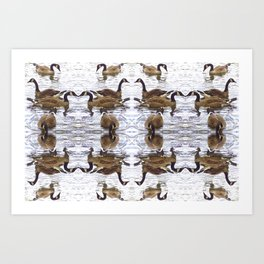 Chicago Geese 1 Art Print