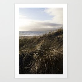 Dune Grass by the Ocean Art Print