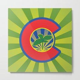 Lil' Colorado Sprout Metal Print
