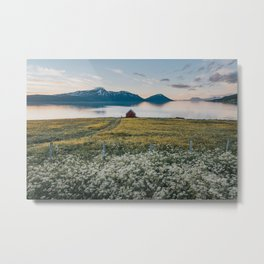 Nordic Summer - Landscape and Nature Photography Metal Print