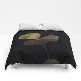 Oxalis in light Comforters