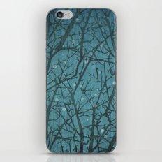 Long Winters Night iPhone & iPod Skin