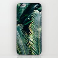 palm tree iPhone & iPod Skins featuring Palm Tree by Pati Designs