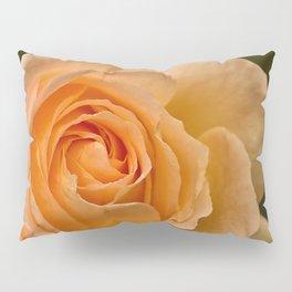 Dew Kissed Rose Floral Pillow Sham