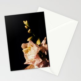 Nyx Series Frame D Stationery Cards