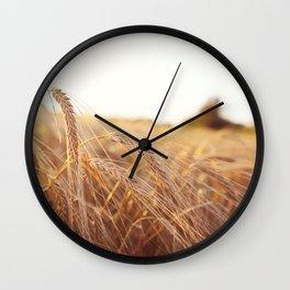 Golden field Wall Clock