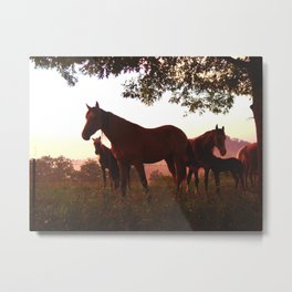 Kentucky Sunset Metal Print