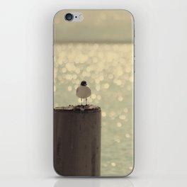 sea XV iPhone Skin