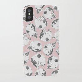 Sleepy Kitties iPhone Case