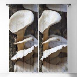 Fungi on a tree Blackout Curtain