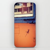 puerto rico iPhone & iPod Skins featuring Lizard in Puerto Rico by ANoelleJay