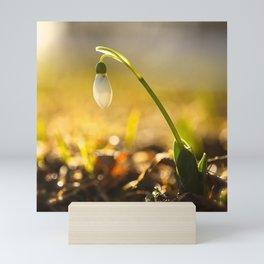 Spring! Mini Art Print