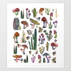 Cactus and Mushrooms NEW!!! Art Print
