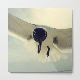 bird 1/3 by akashidan Metal Print