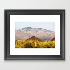 Saguaro National Park Framed Art Print