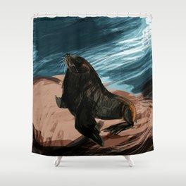 South American fur seal Shower Curtain