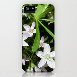Spring Beauty 09 iPhone Case