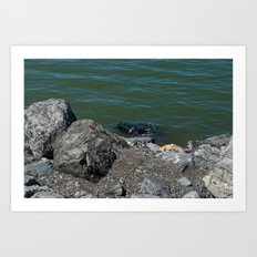 Salt Lake Scenery Art Print