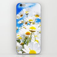 daisy iPhone & iPod Skins featuring DAISY by Ylenia Pizzetti