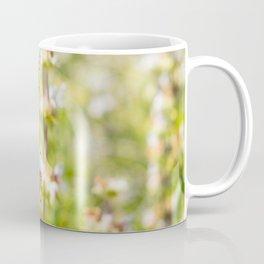 Nature photography White grass flower I Coffee Mug