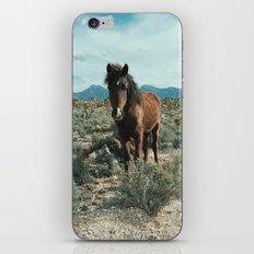 Nevada Desert Horse iPhone & iPod Skin