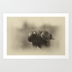 Vintage Golden Eagle Art Print