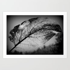 lightness of being Art Print