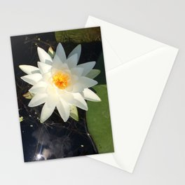 Naturals by Nikki - White Water Lily (open) Stationery Cards