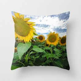 Sunflower Field in Southern Spain Throw Pillow