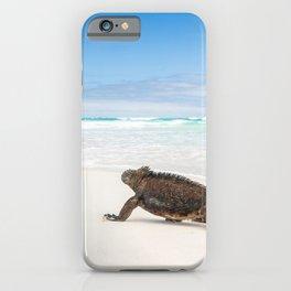 Galapagos wildlife beach iPhone Case