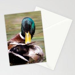 Talk to the Beak Stationery Cards