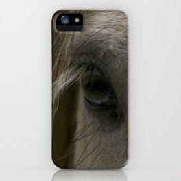 Blue eyes iPhone Case