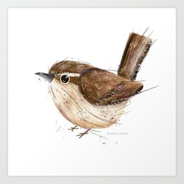 Carolina Wren Bird Illustration  Art Print