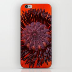 Poppy 3 iPhone & iPod Skin