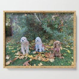 Autumn cockapoo leafs Serving Tray