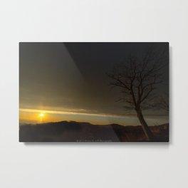 Tree and the Sun Metal Print