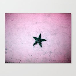 star fish Canvas Print